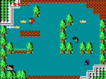 Little Red Hood NES